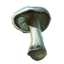 ON-icon-reagent-White Cap.png