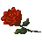 DF-item-Sanguine Rose.png