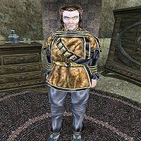 Can You Buy A House In Morrowind