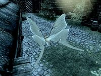 Skyrim:Luna Moth Wing - The Unofficial Elder Scrolls Pages