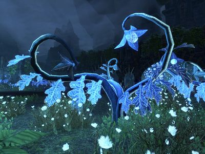 ON-flora-Darkshade Glowstalk.jpg