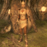 Skyrim Golden Saint The Unofficial Elder Scrolls Pages Uesp