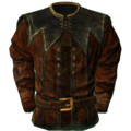 SR-icon-clothing-Jester'sClothes.png