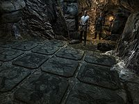 Skyrim Delphine The Unofficial Elder Scrolls Pages Uesp