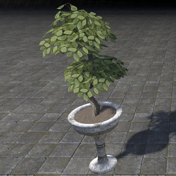 File:ON-item-furnishing-Alinor Potted Plant, Double Tiered.jpg