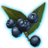 ON-icon-misc-Onyx Berries of Bloom.png
