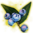 ON-icon-misc-Icebreath Berries of Ripeness.png