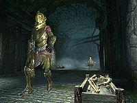 Skyrim:Missing In Action - The Unofficial Elder Scrolls