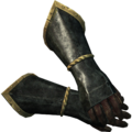 SR-icon-armor-Imperial Dragon Gauntlets.png