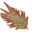 OB-icon-ingredient-Somnalius Frond.png