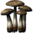 SR-icon-ingredient-Namira's Rot.png