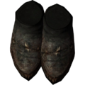 SR-icon-armor-FurShoes.png