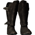 SR-icon-armor-PenitusOculatusBoots.png