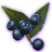 ON-icon-misc-Onyx Berries of Budding.png
