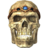 SR-icon-misc-Potema'sSkull.png
