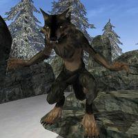 Bloodmoon:Werewolf - The Unofficial Elder Scrolls Pages (UESP)