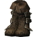 SR-icon-armor-Dawnguard Boots.png