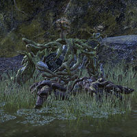 Online:Belly-of-Stone - The Unofficial Elder Scrolls Pages