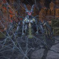 Onlinespider Daedra The Unofficial Elder Scrolls Pages Uesp
