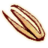 OB-icon-ingredient-Stinkhorn Cap.png