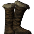 SR-icon-clothing-Fur-LinedBoots.png