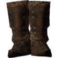 SR-icon-armor-FurBoots.png