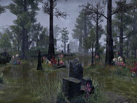 Online:Murkmire - The Unofficial Elder Scrolls Pages (UESP)