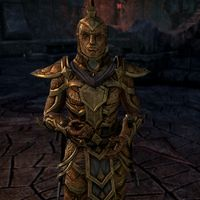 Online:Ordinators - The Unofficial Elder Scrolls Pages (UESP)
