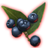 ON-icon-misc-Onyx Berries of Growth.png