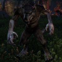 Online:Werewolf - The Unofficial Elder Scrolls Pages (UESP)