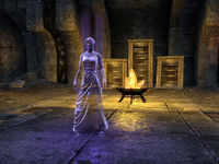 Online:The Veil Falls - The Unofficial Elder Scrolls Pages (UESP)