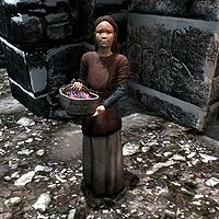 Skyrim:Sofie - The Unofficial Elder Scrolls Pages (UESP)