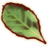 OB-icon-ingredient-Tobacco.png