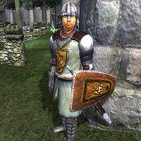 Oblivion:City Guard - The Unofficial Elder Scrolls Pages (UESP)