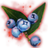 ON-icon-misc-Icebreath Berries of Growth.png