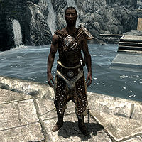 Skyrim:Trainers - The Unofficial Elder Scrolls Pages (UESP)