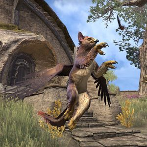 ON-pet-Fledgling Gryphon 02.jpg