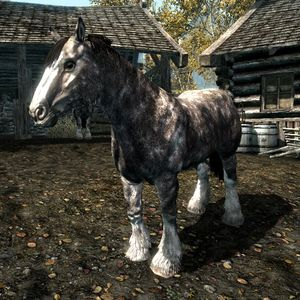 Skyrim Horses The Unofficial Elder Scrolls Pages Uesp