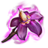 ON-icon-reagent-Nightshade.png