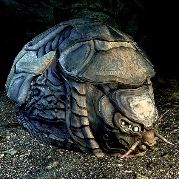 File:SR-creature-Shellbug.jpg