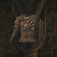 Skyrim:Thieves Guild Armor - The Unofficial Elder Scrolls
