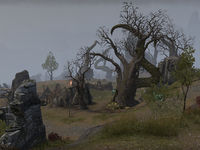 ON-place-Jackdaw Cove 02.jpg