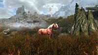 Skyrim:Horse Whisperer - The Unofficial Elder Scrolls Pages (UESP)