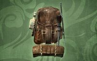 Skyrim:Adventurer's Backpack - The Unofficial Elder Scrolls