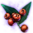 ON-icon-misc-Crimson Berries of Budding.png