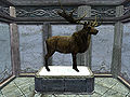 SR-trophy-Deer.jpg