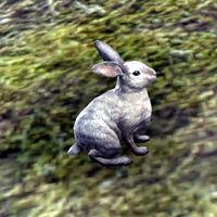 200px-ON-creature-Darkwater_Rabbit.jpg