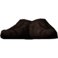 SR-icon-clothing-Shoes1.png