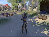 Online Wearing The Veil The Unofficial Elder Scrolls Pages Uesp